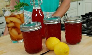 Canning Rhubarb Syrup – VIDEO