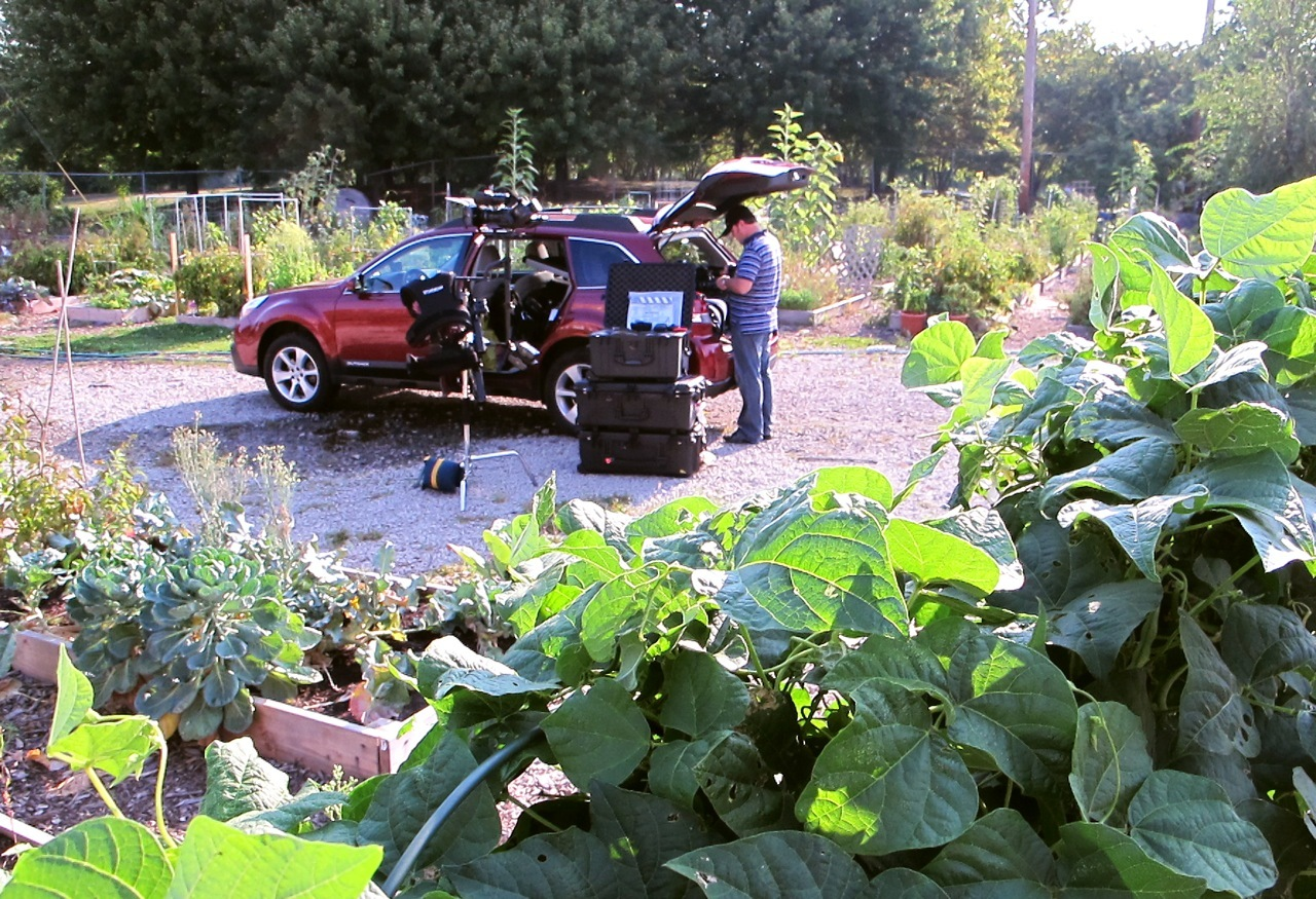 GGW in the parking lot transformed into a victory garden