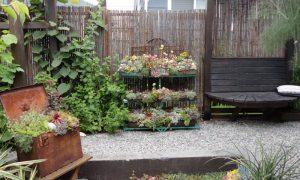 Episode 505 – Container Gardening