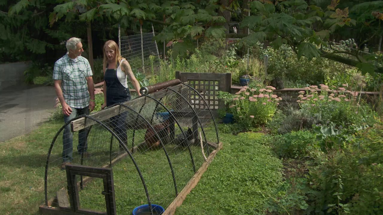 Episode 523 modern homesteading growing a greener world tv for Modern homestead house designs