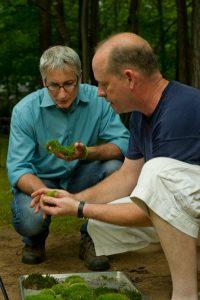 David Spain and Joe Lampl-GrowingAGreenerWorld.com