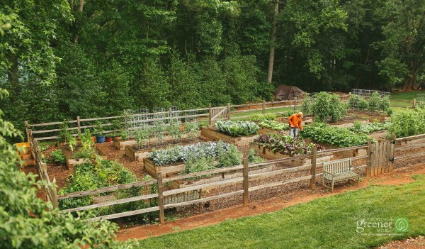 GGWTV raised bed vegetable garden-GrowingAGreenerWorld.com