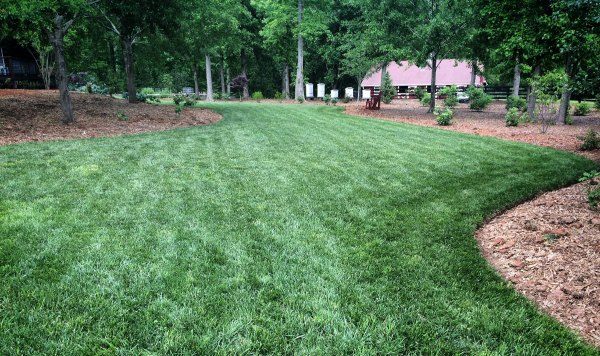 This lawn and garden thrives without the use of synthetic fertilizers or herbicides. Improve soil to improve health