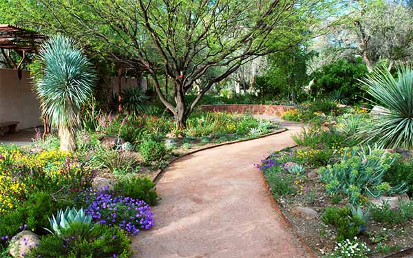The waterwise landscape and garden for Water garden landscaping