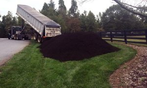 Buying Compost in Bulk – When Quantity and Quality Matter