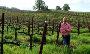 714 – Red, White, and GREEN: America's Earth-Friendly Vineyard