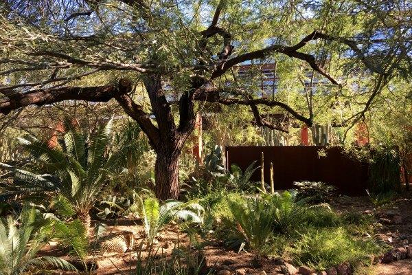 Merveilleux Episode 806   Gardening In The Desert Southwest
