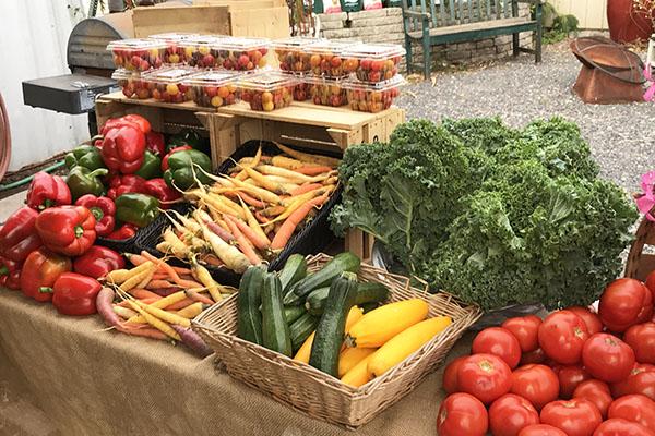 Greensgrow Farm vegetables