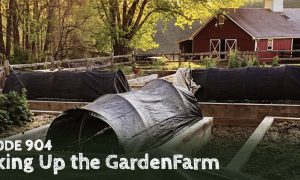 Episode 904 – Waking Up the GardenFarm™