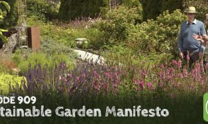 Episode 909-Sustainable Garden Manifesto