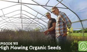 Episode 911-High Mowing Organic Seeds: The Power of a Seed to Change the World