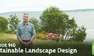 Episode 910-Working With Nature for a Sustainable Landscape Design