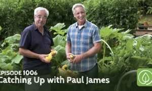 Episode 1006-Catching up with TV Garden Legend Paul James