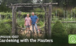 Episode 1007-Gardening with the Masters: Growing Unusual Fruit with Lee Reich