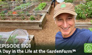 Joe Lamp'l behind the scenes at the GardenFarm™