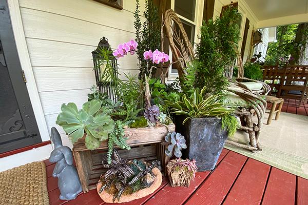 Container garden on a porch